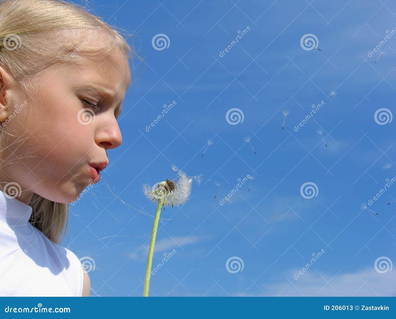 κορίτσι πικραλίδων χτυπημάτων λίγα
