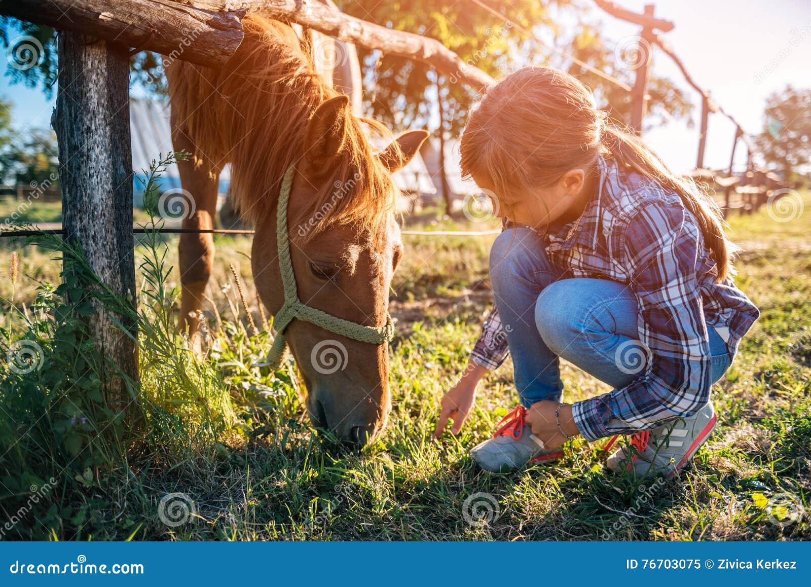 Κορίτσι που ταΐζει το καφετί άλογο