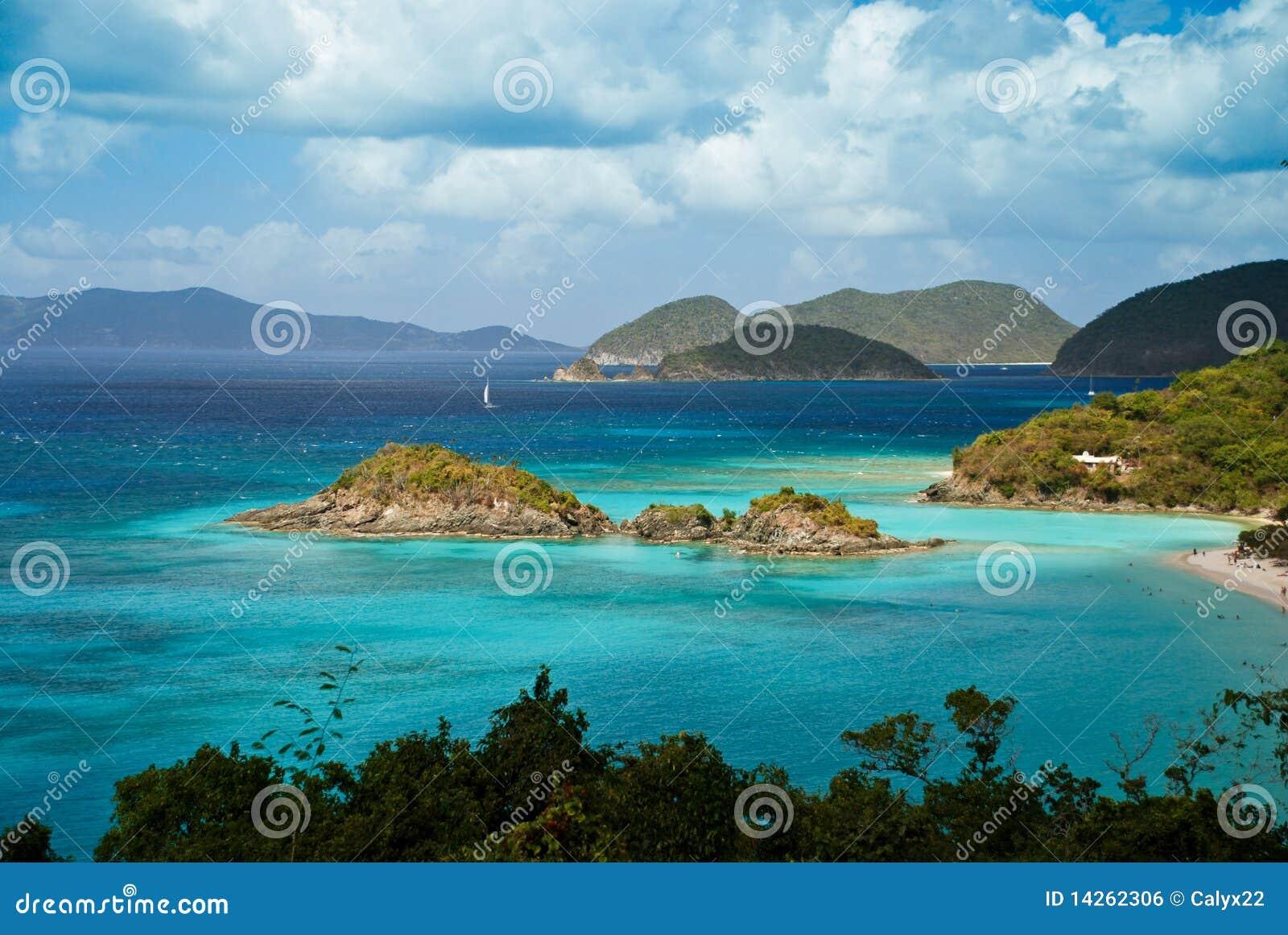 κορμός Virgin νησιών κόλπων