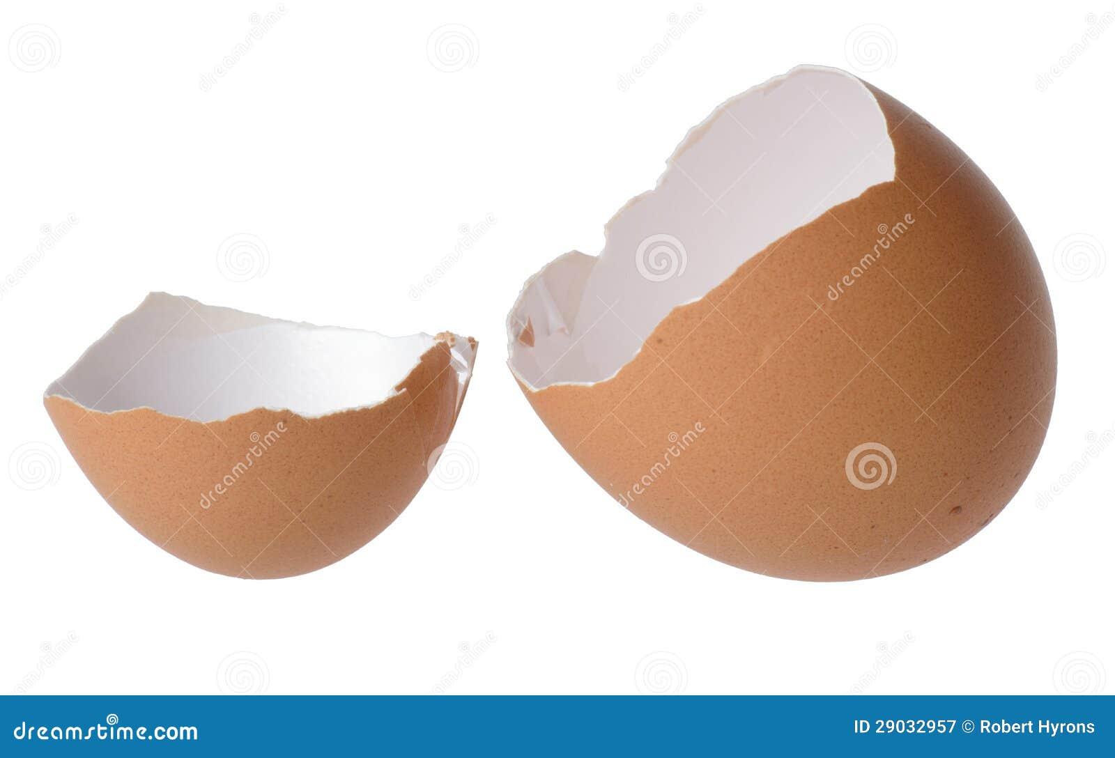 Κοχύλι αυγών