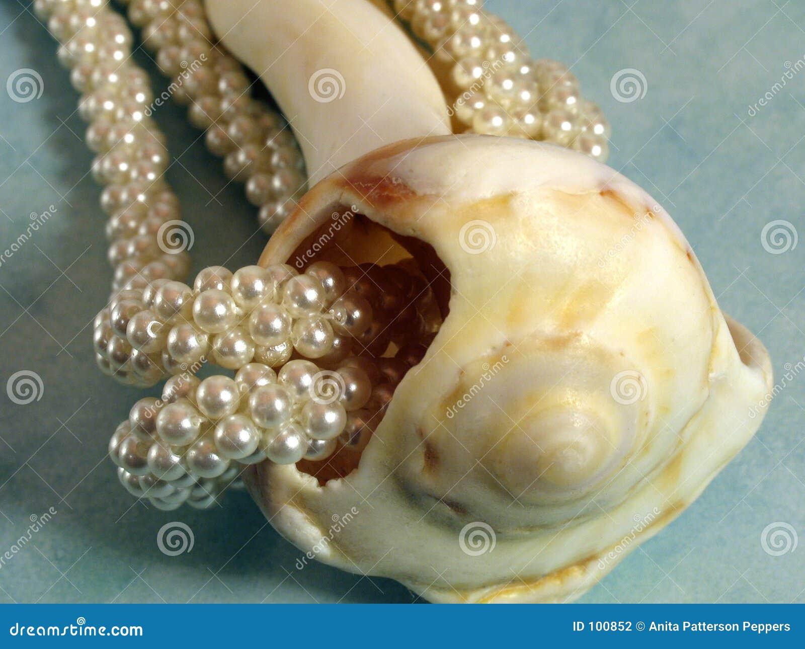 κοχύλι μαργαριταριών