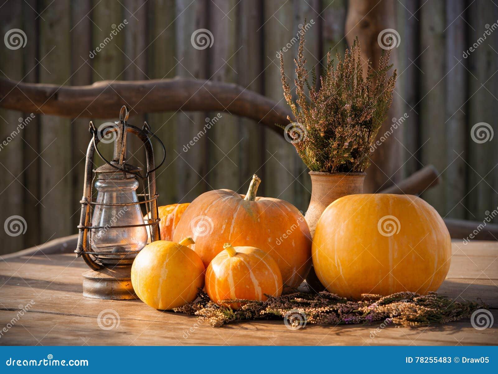 Κολοκύθες φθινοπώρου, το υπόβαθρο ημέρας των ευχαριστιών, αποκριές
