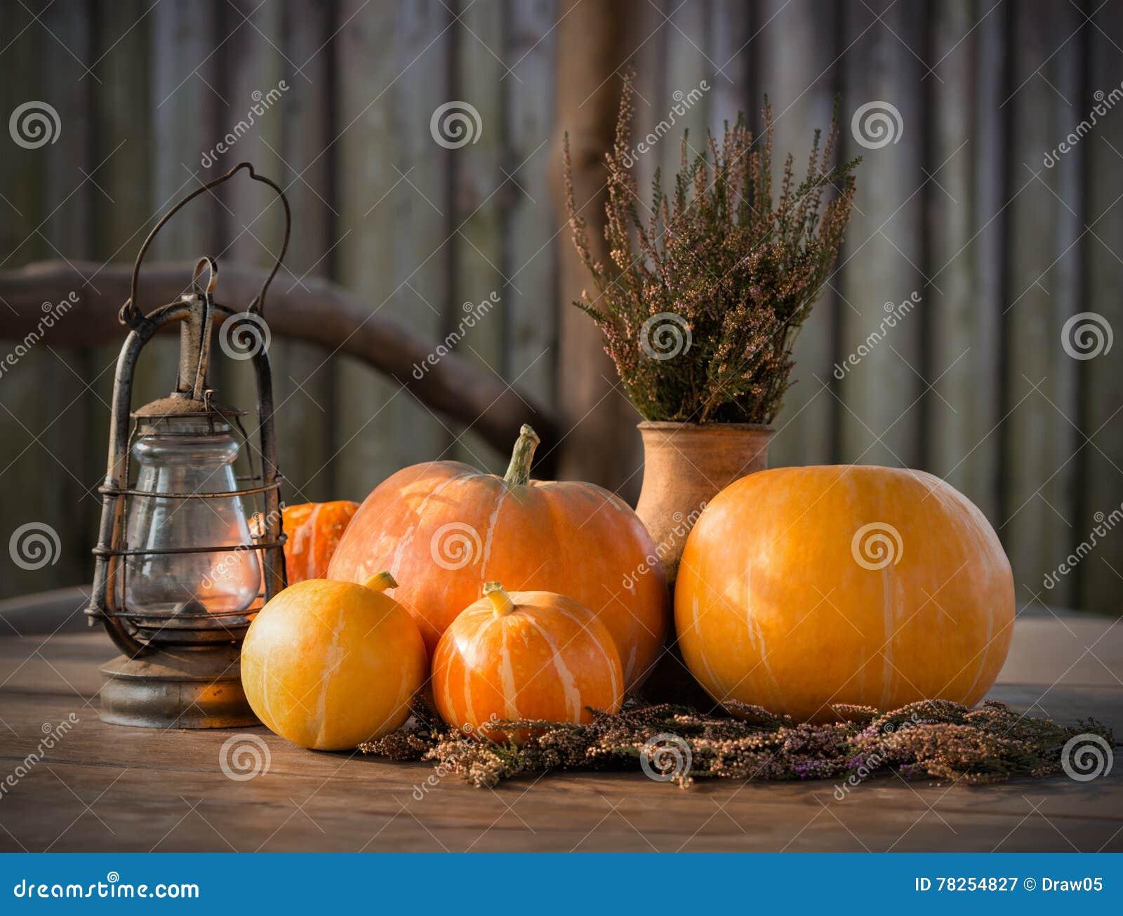 Κολοκύθες φθινοπώρου, υπόβαθρο ημέρας των ευχαριστιών, αποκριές