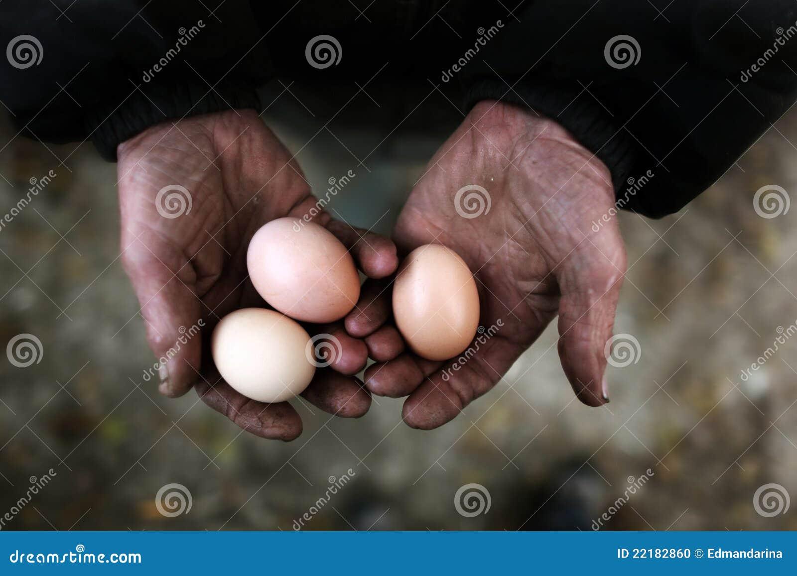 κράτημα αυγών