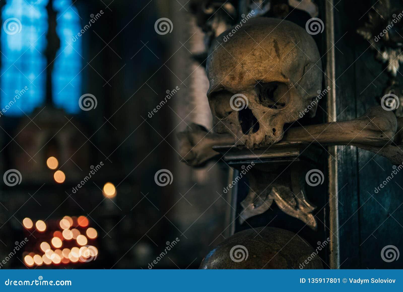 Κρανίο ανθρώπων στο σκοτάδι με την μπλε ελαφριά ζωή υποβάθρου παραθύρων ακόμα Εικόνα έννοιας θέσεων φρίκης