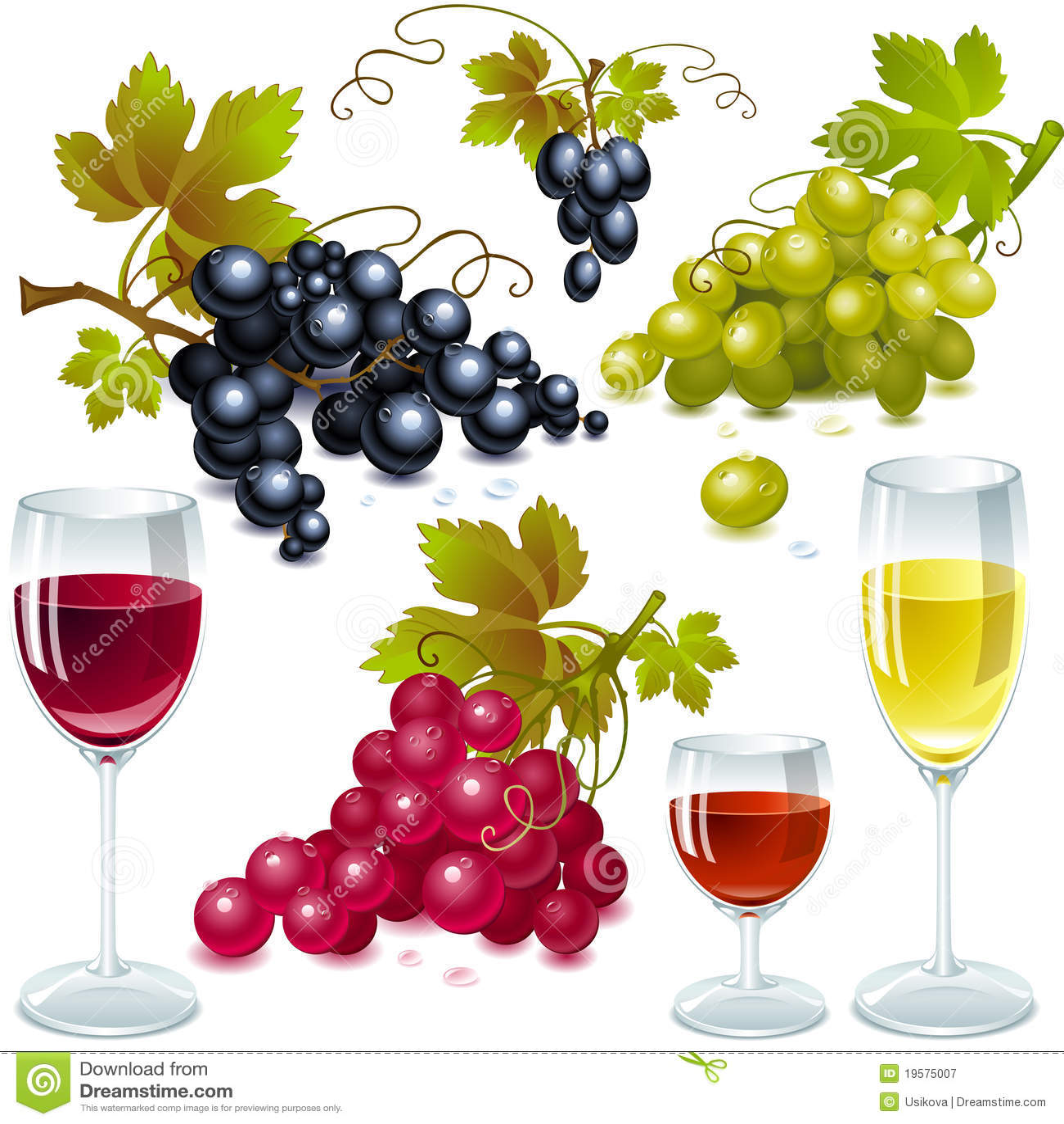κρασί φύλλων σταφυλιών γ&upsilo