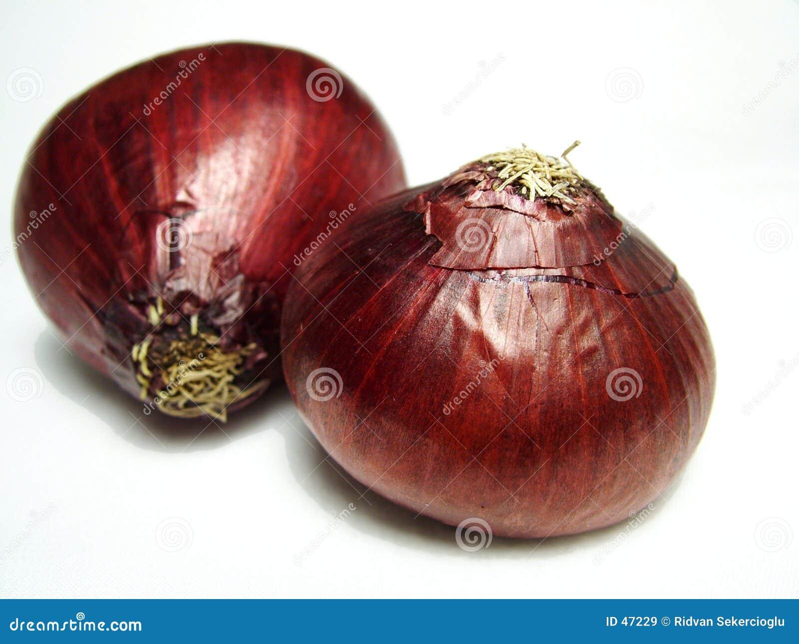 κρεμμύδια