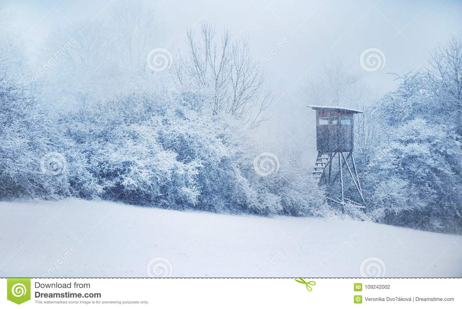 κρύψτε το κυνήγι Χειμώνας στην κεντρική Ευρώπη χιονοπτώσεις