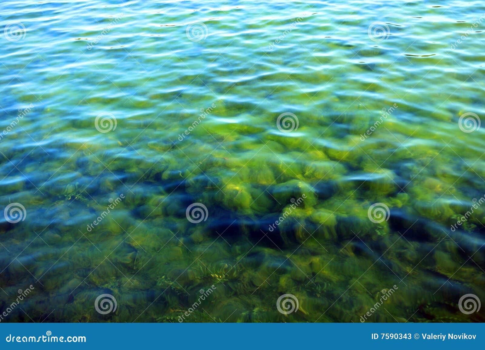 Κυμάτωση στο ύδωρ