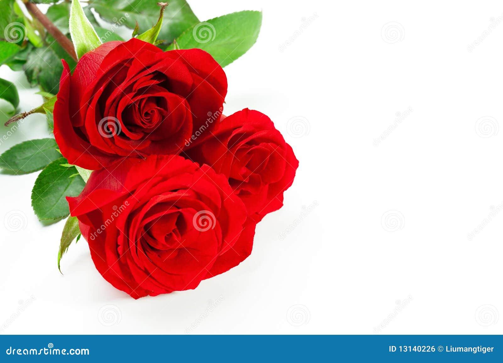 κόκκινα τριαντάφυλλα τρία
