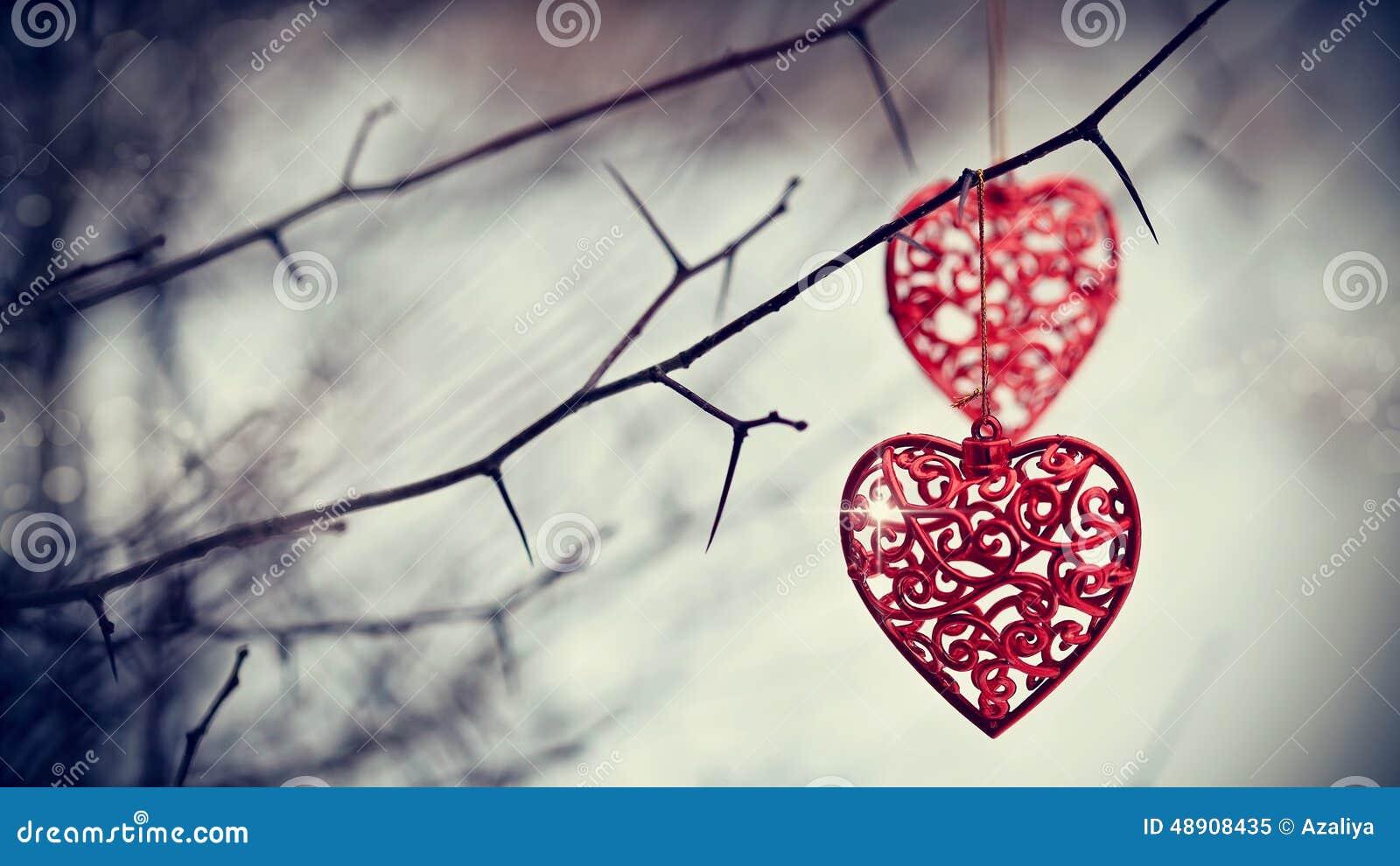 Κόκκινες καρδιές στους τραχιούς κλάδους