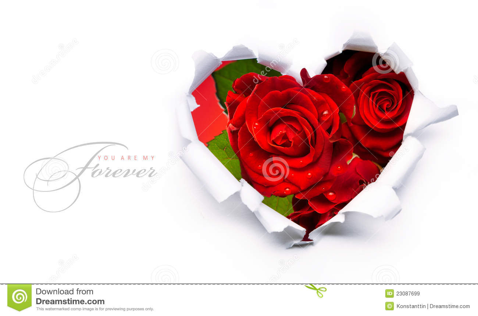 Κόκκινες τριαντάφυλλα ημέρας βαλεντίνων εμβλημάτων και καρδιά εγγράφου