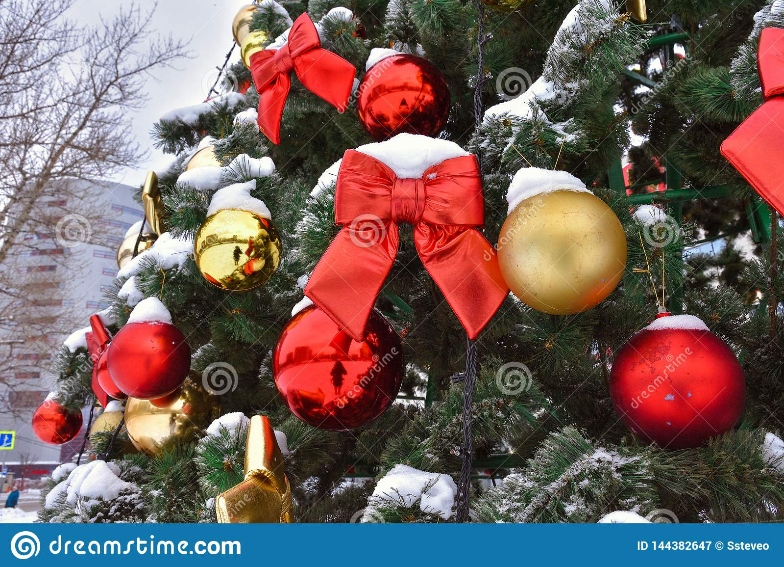 Κόκκινο τόξο στο δέντρο στο χιόνι