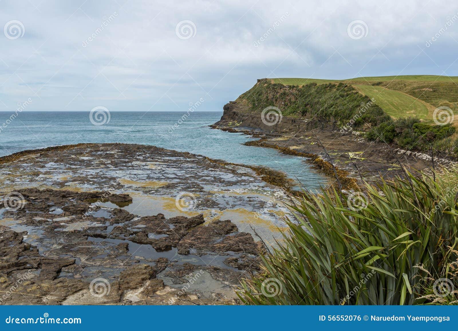 Download Κόλπος τιμαλφών αντικειμένων, το Catlins Νέα Ζηλανδία Στοκ Εικόνες - εικόνα από southland, curio: 56552076