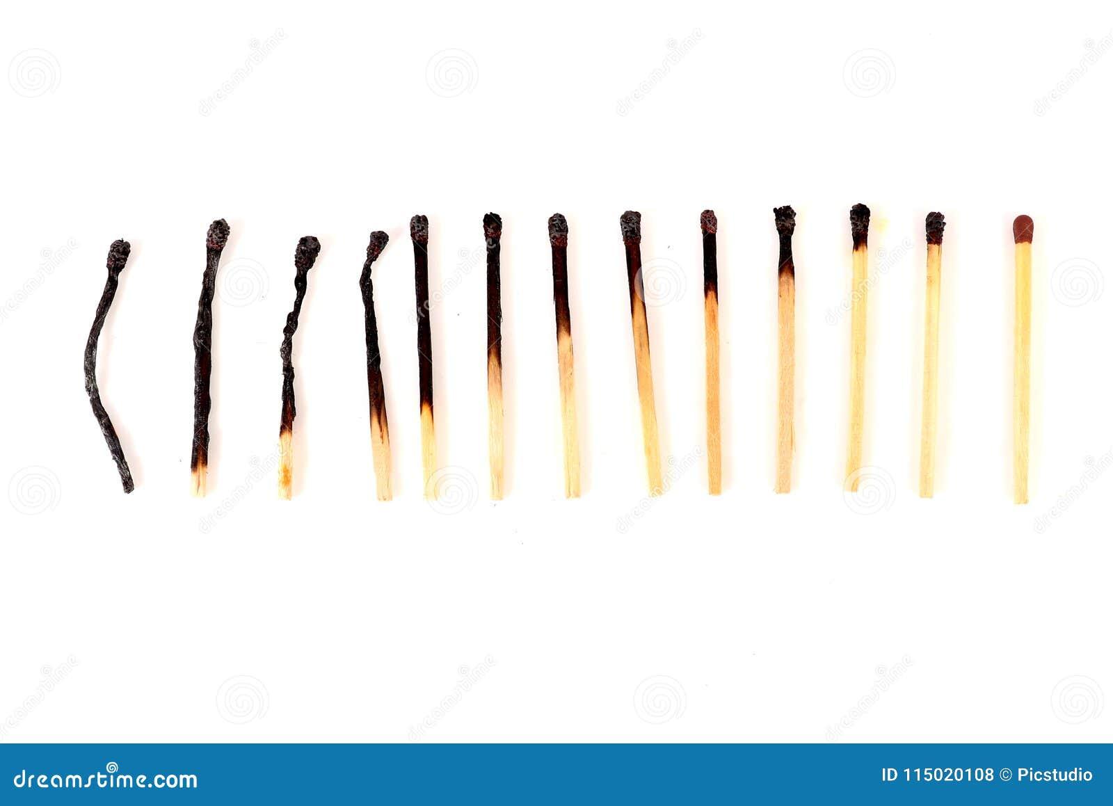 Κύκλος ζωής του matchstick