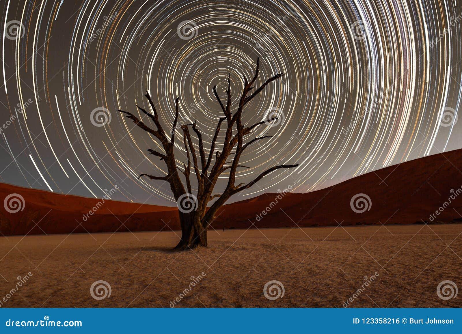 Κύκλος ιχνών αστεριών πέρα από ένα δέντρο camelthorn