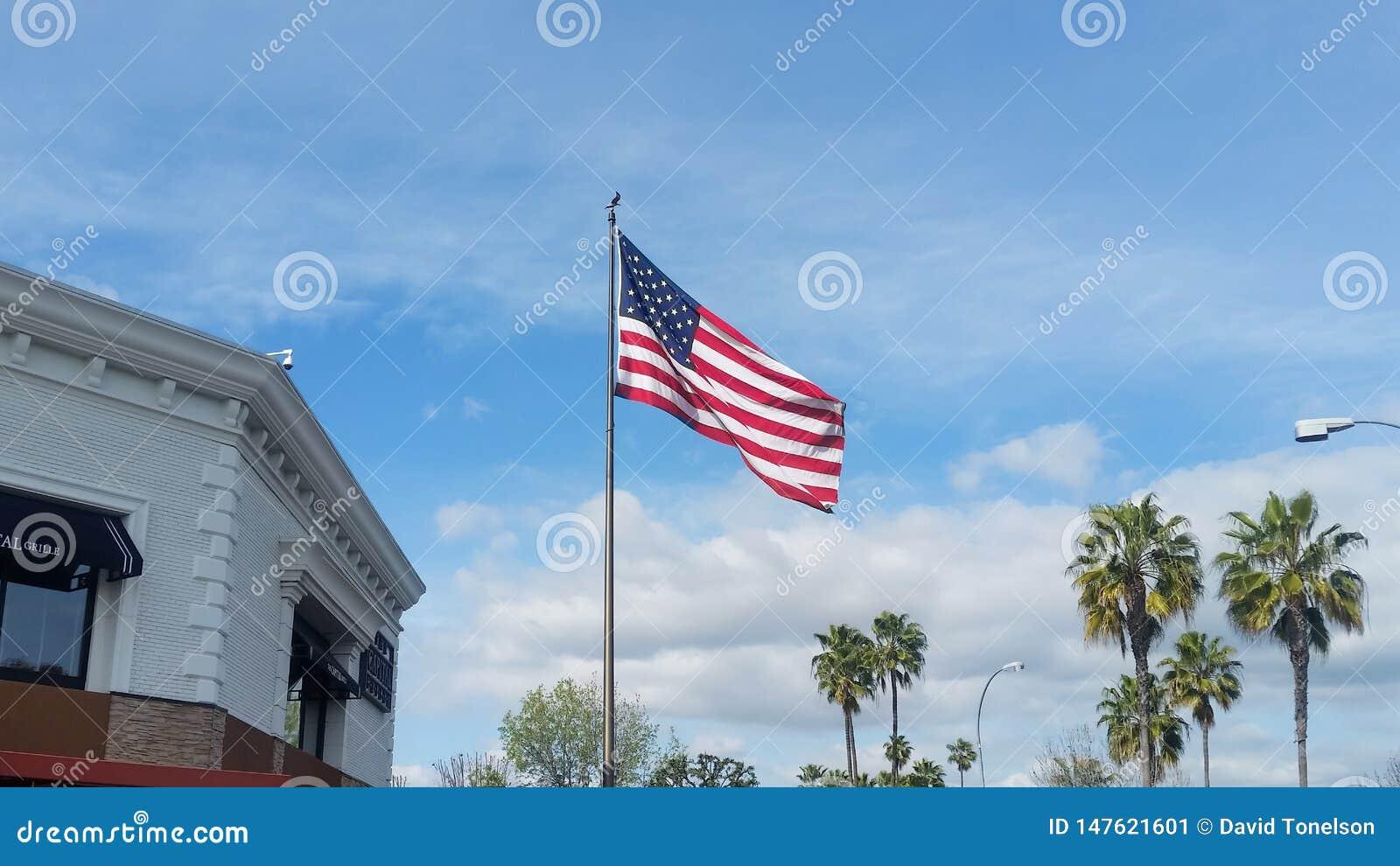 Κύματα αμερικανικών σημαιών