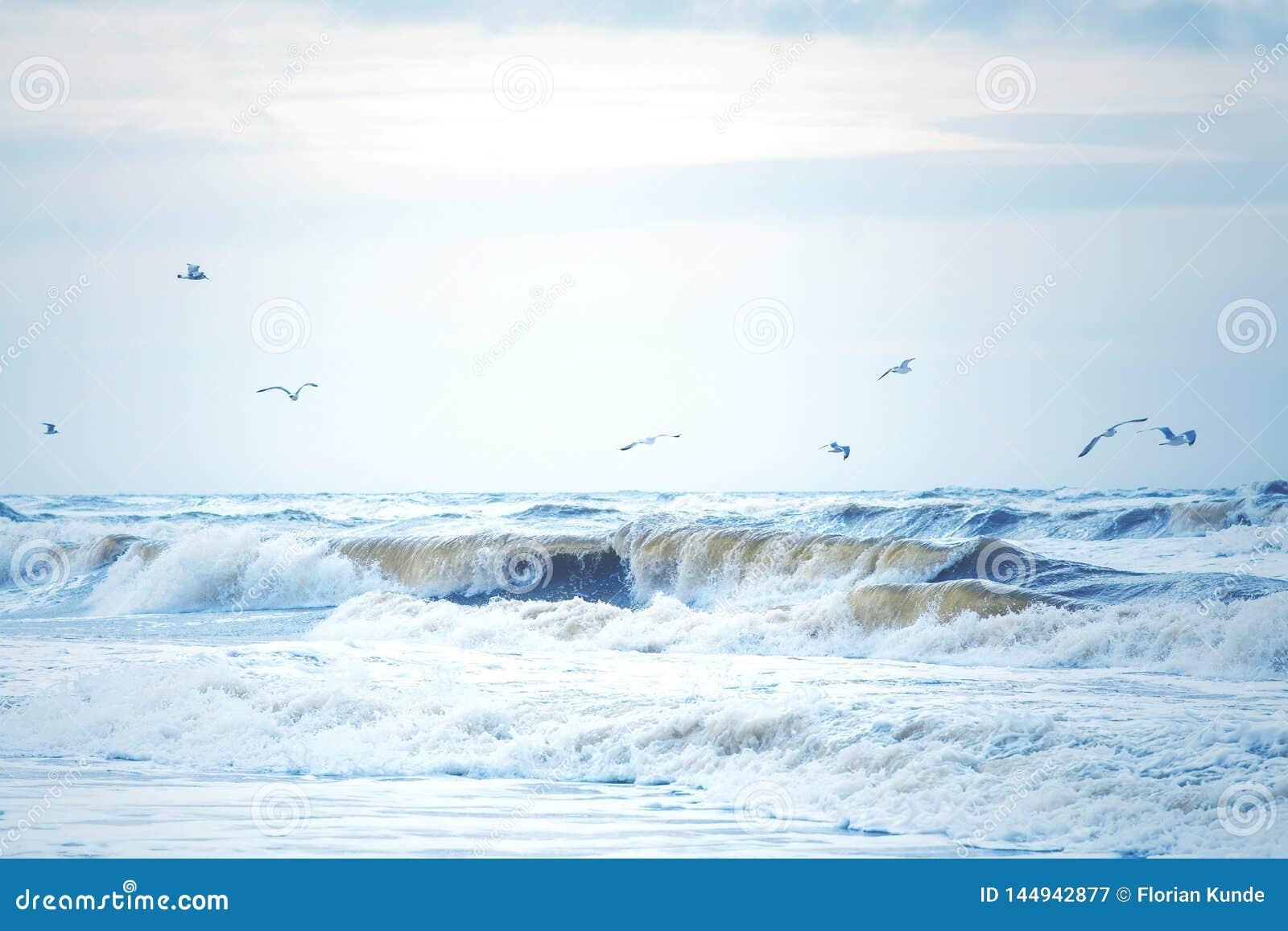 Κύματα στη Βόρεια Θάλασσα στη Δανία