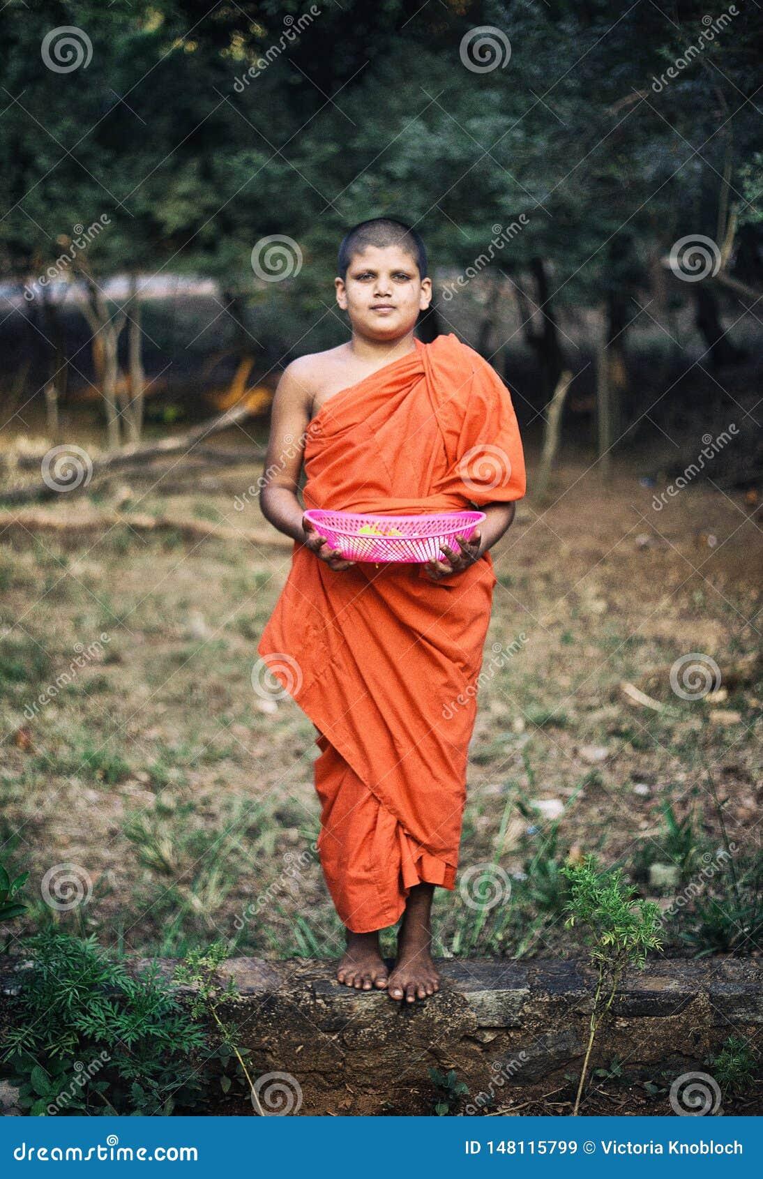 Λίγος μοναχός σε Dambulla