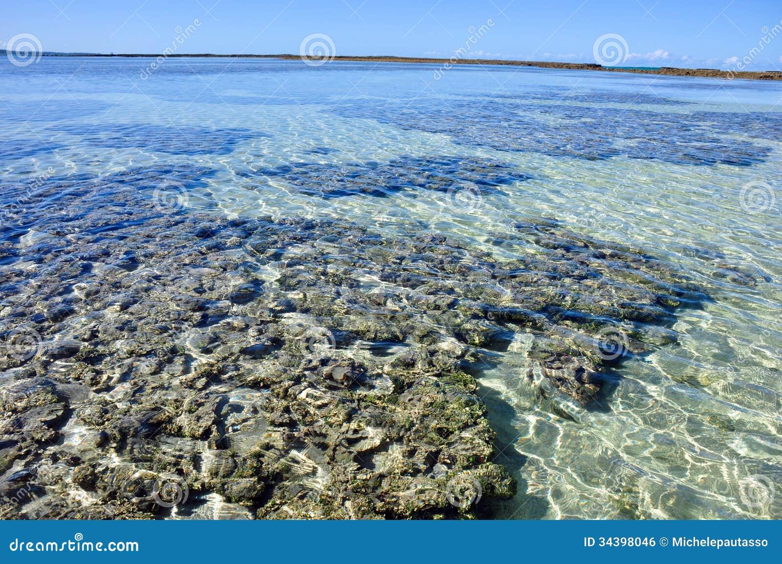 Λίμνες του maragogi