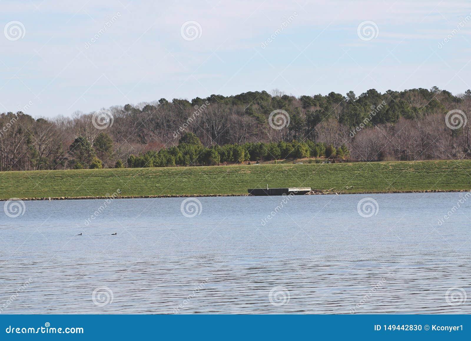 Λίμνη που περιβάλλεται από τη δασώδη περιοχή