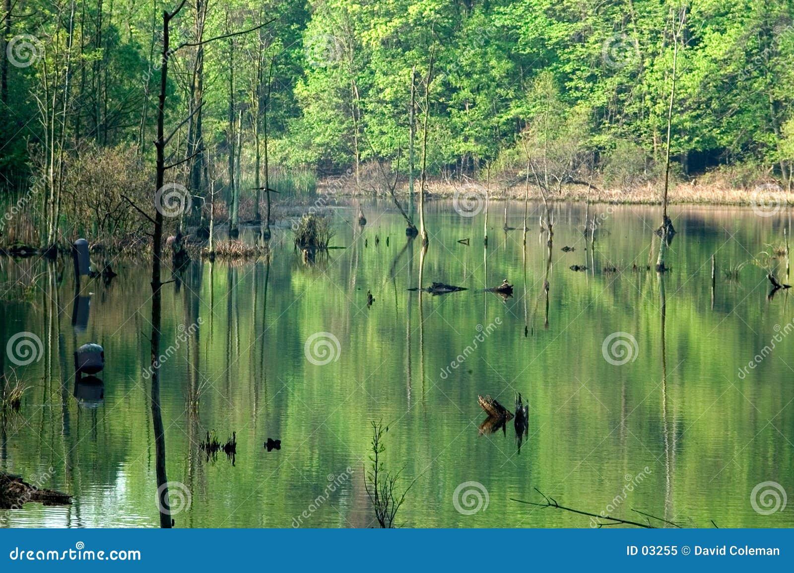 λίμνη του Isaac