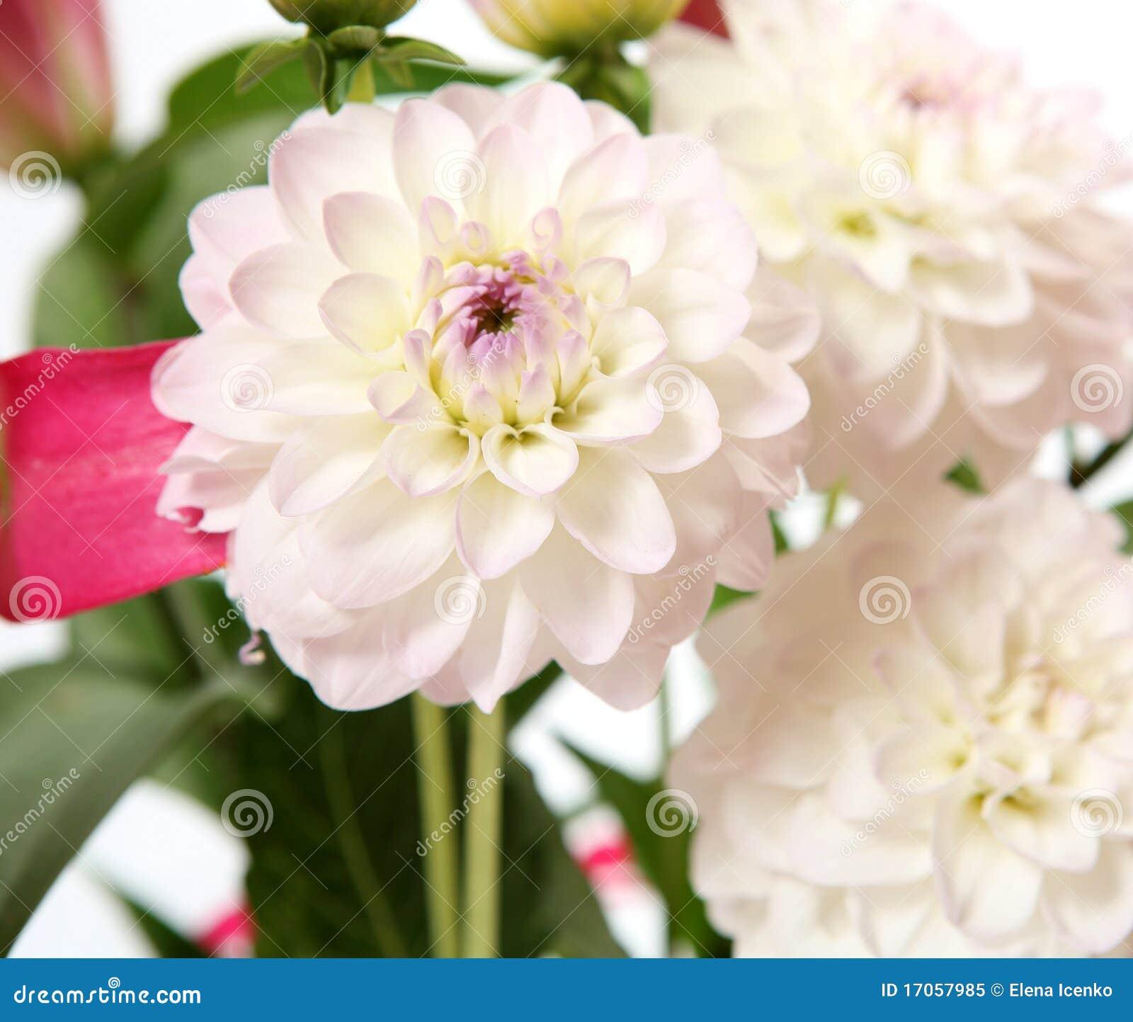 λεπτά λουλούδια