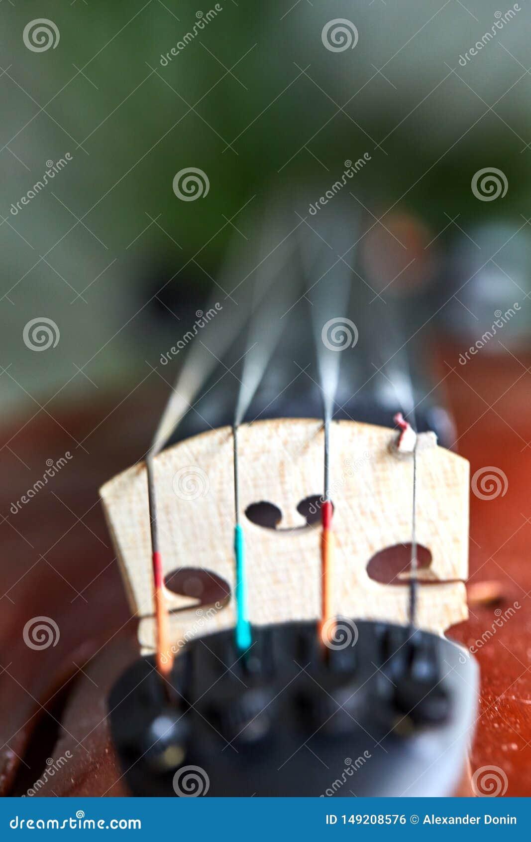 Λεπτομέρεια του βιολιού Εκλεκτική εστίαση με το ρηχό βάθος