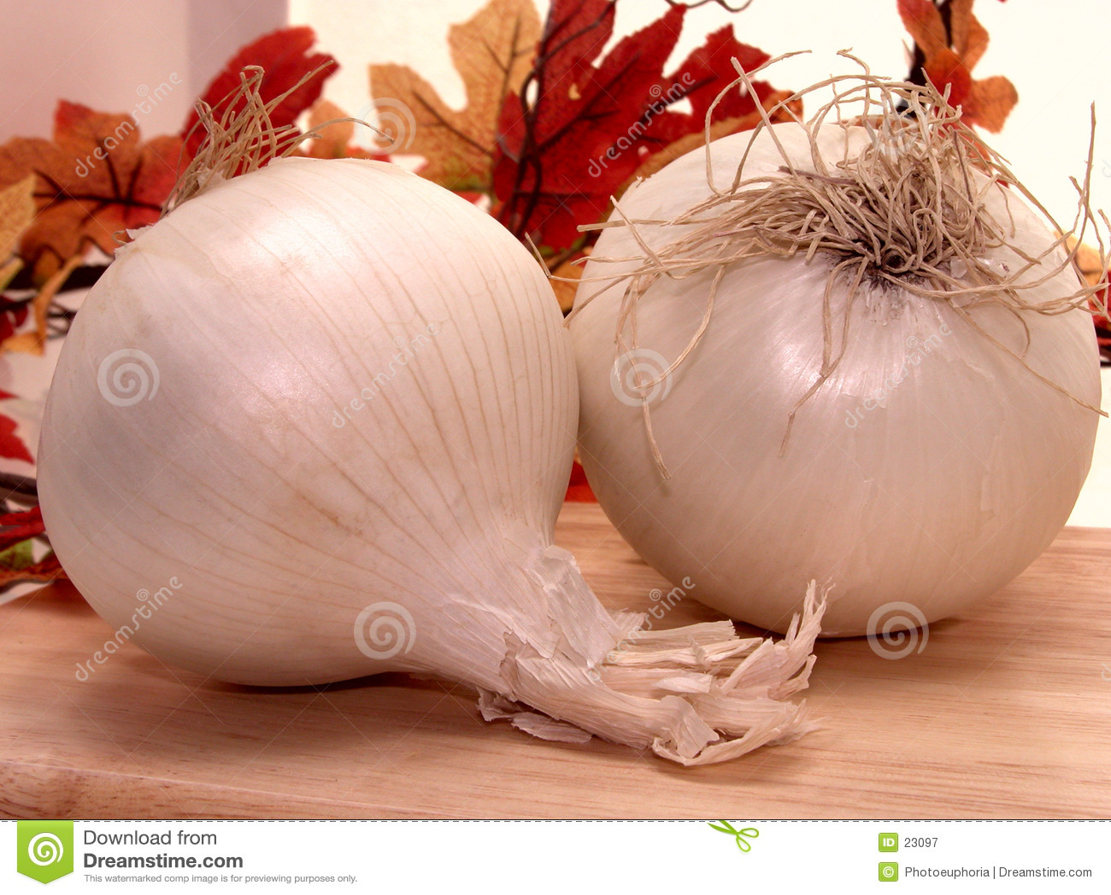 λευκό κρεμμυδιών τροφίμων