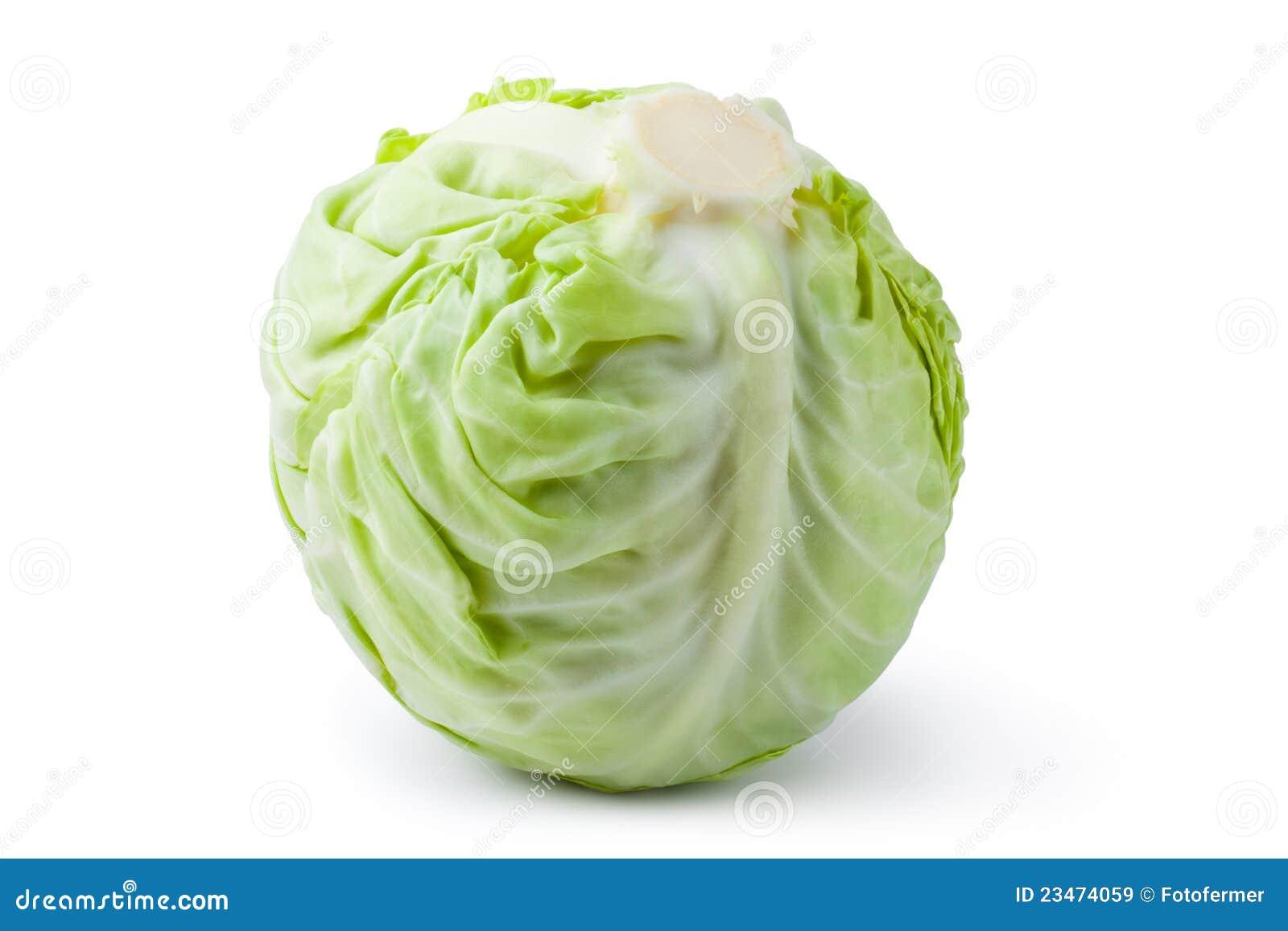 λευκό λάχανων