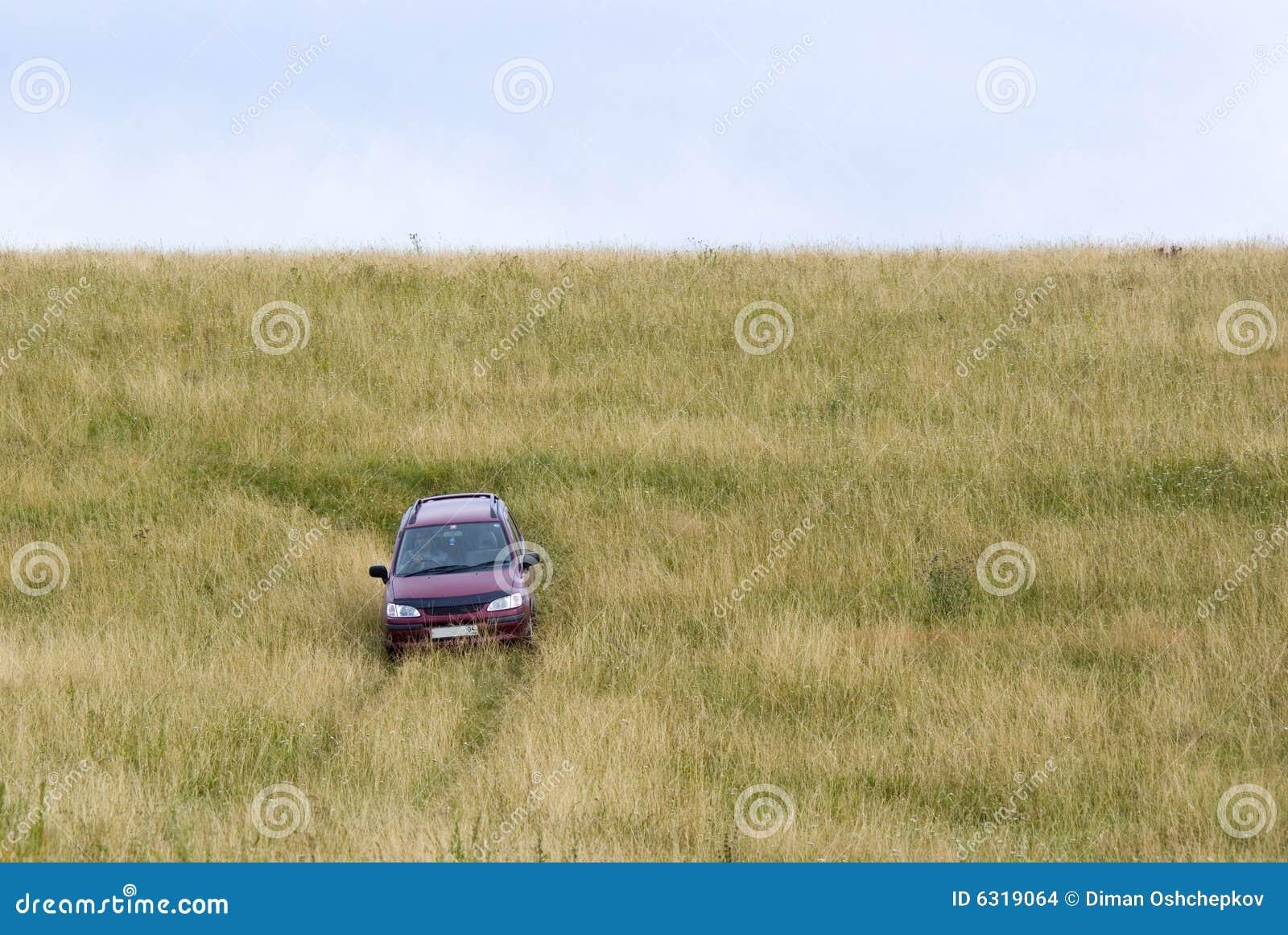λιβάδι αυτοκινήτων