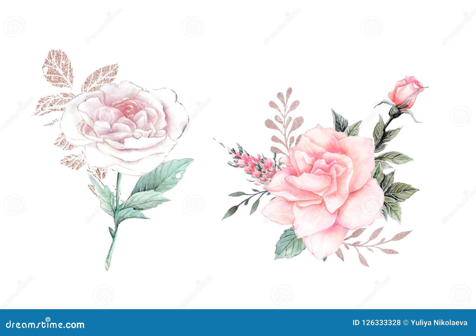 λουλούδια ι συντακτών watercolor εικόνων ζωγραφικής floral απεικόνιση, φύλλο και οφθαλμοί Βοτανική σύνθεση για το γάμο ή τη ευχετ