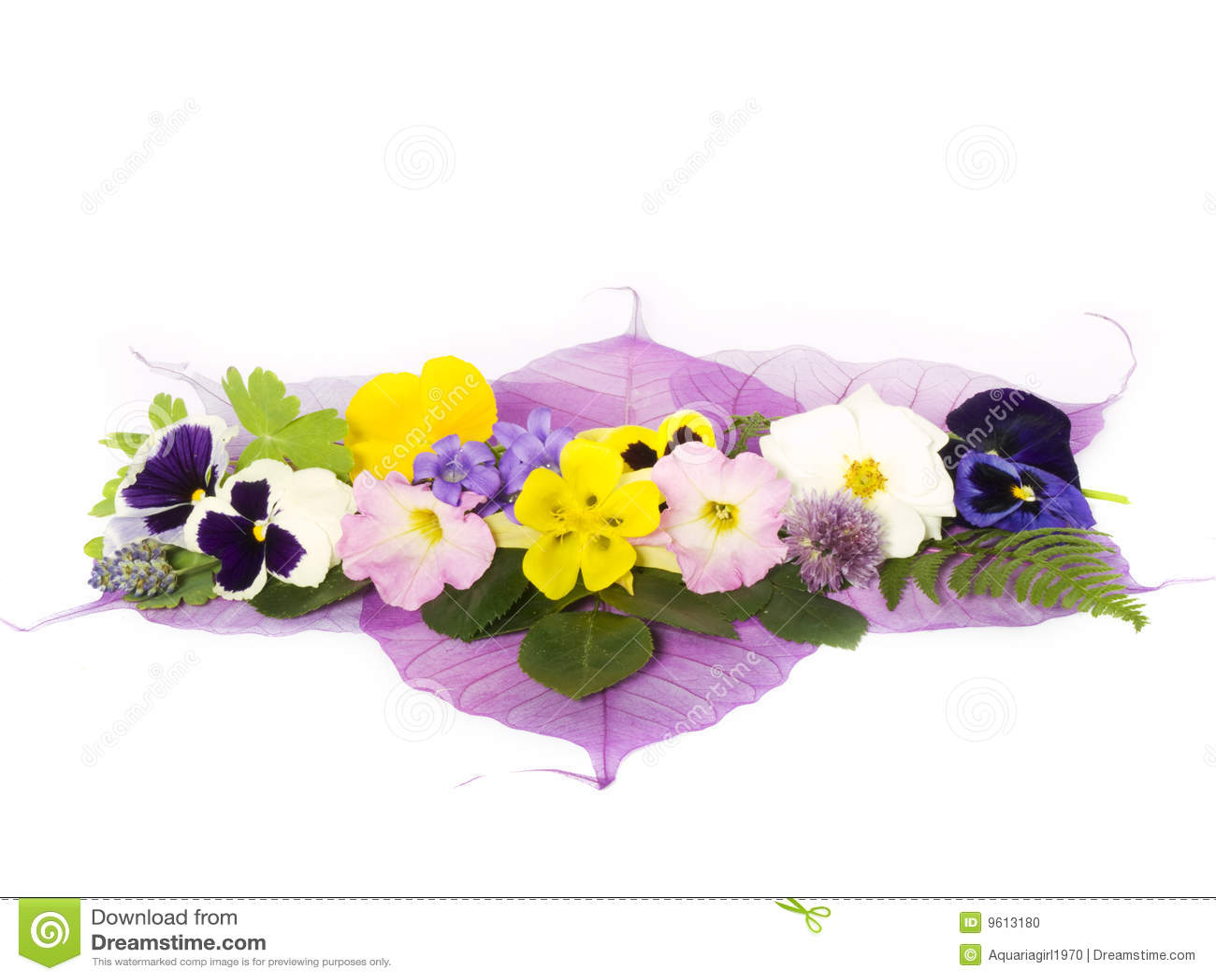 λουλούδι διακοσμήσεων