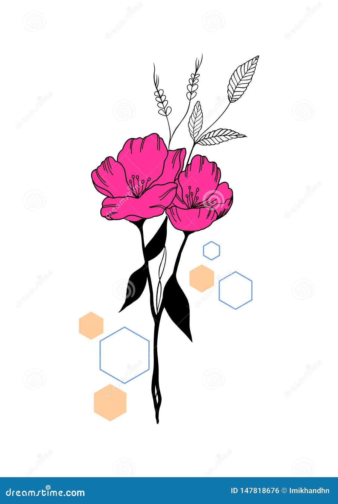 Λουλούδι με κάποια hexagon μορφή