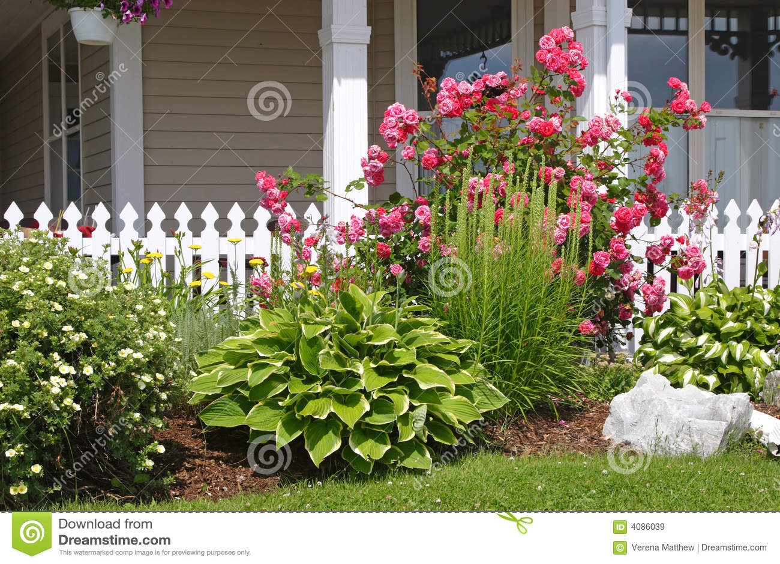 λουλούδι σπορείων