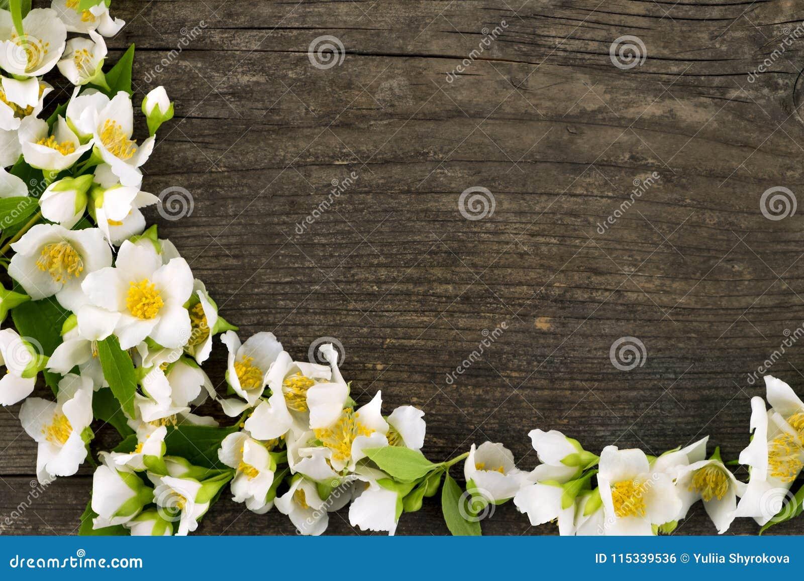 Λουλούδι της Jasmine στο ξύλινο γραφείο