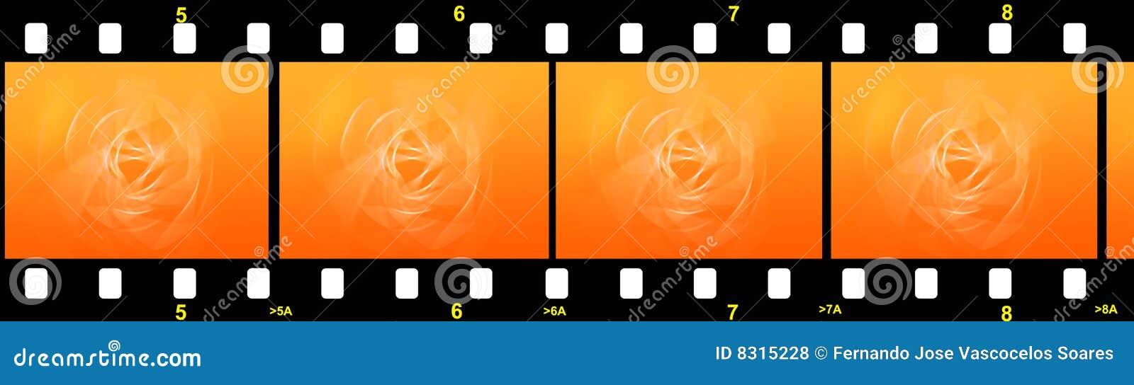 λουρίδα ταινιών