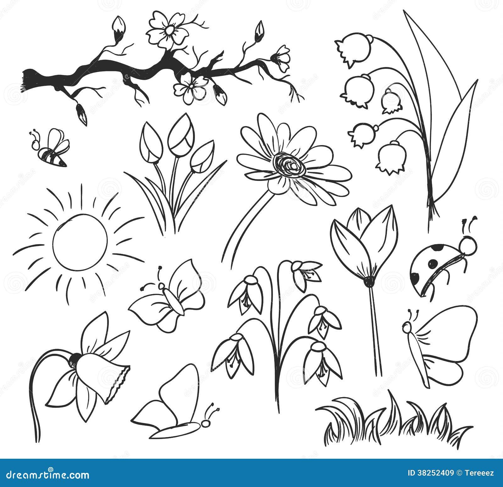Λουλούδια σχεδίων μελανιού άνοιξη που απομονώνονται