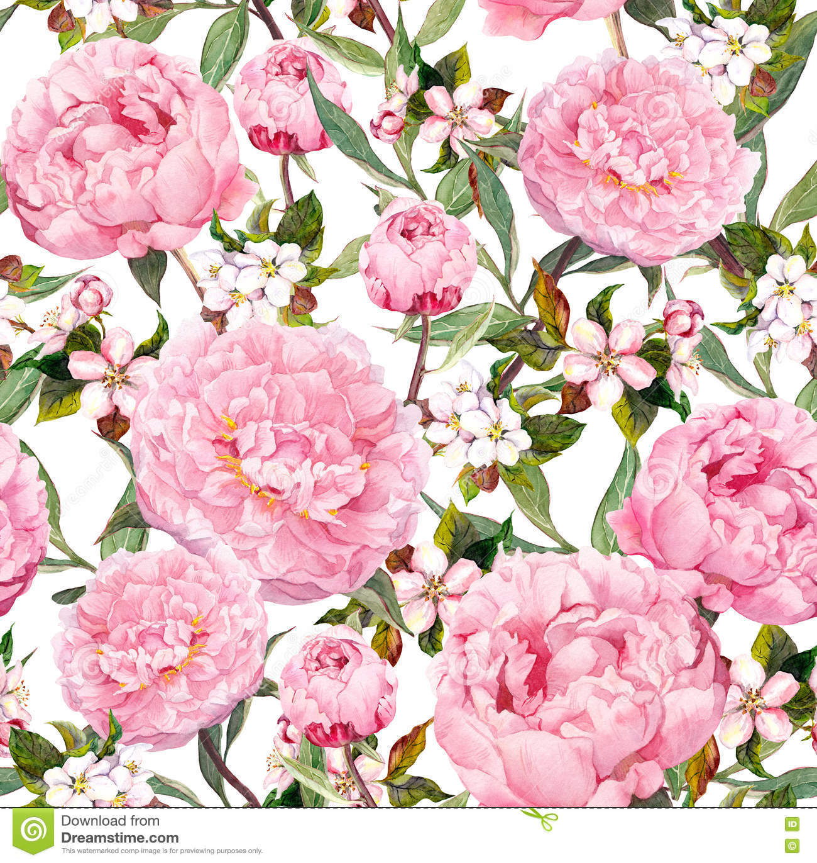 Λουλούδια Peony, sakura floral άνευ ραφής ανασκόπησης watercolor