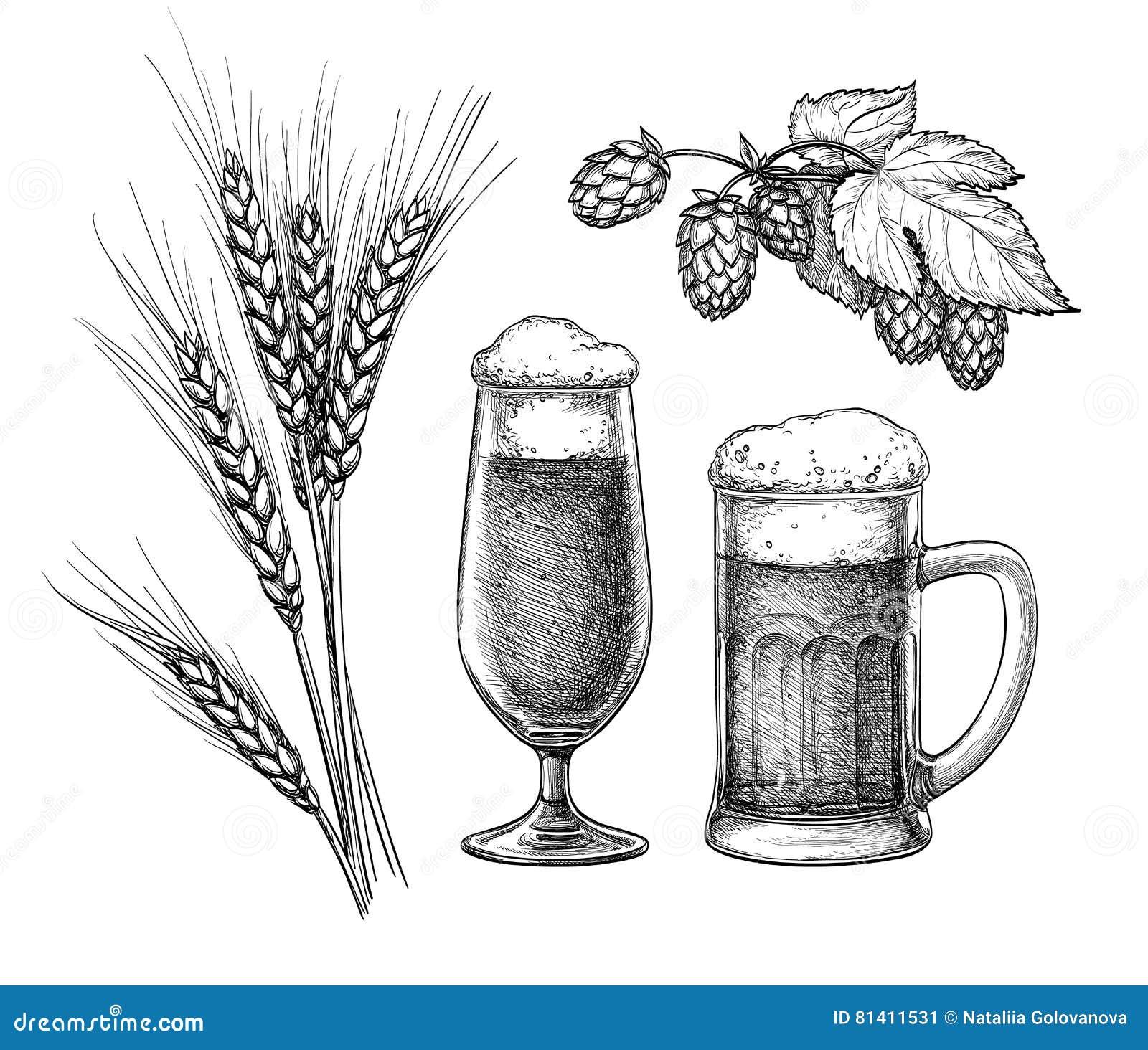 Λυκίσκοι, βύνη, γυαλί μπύρας και κούπα μπύρας