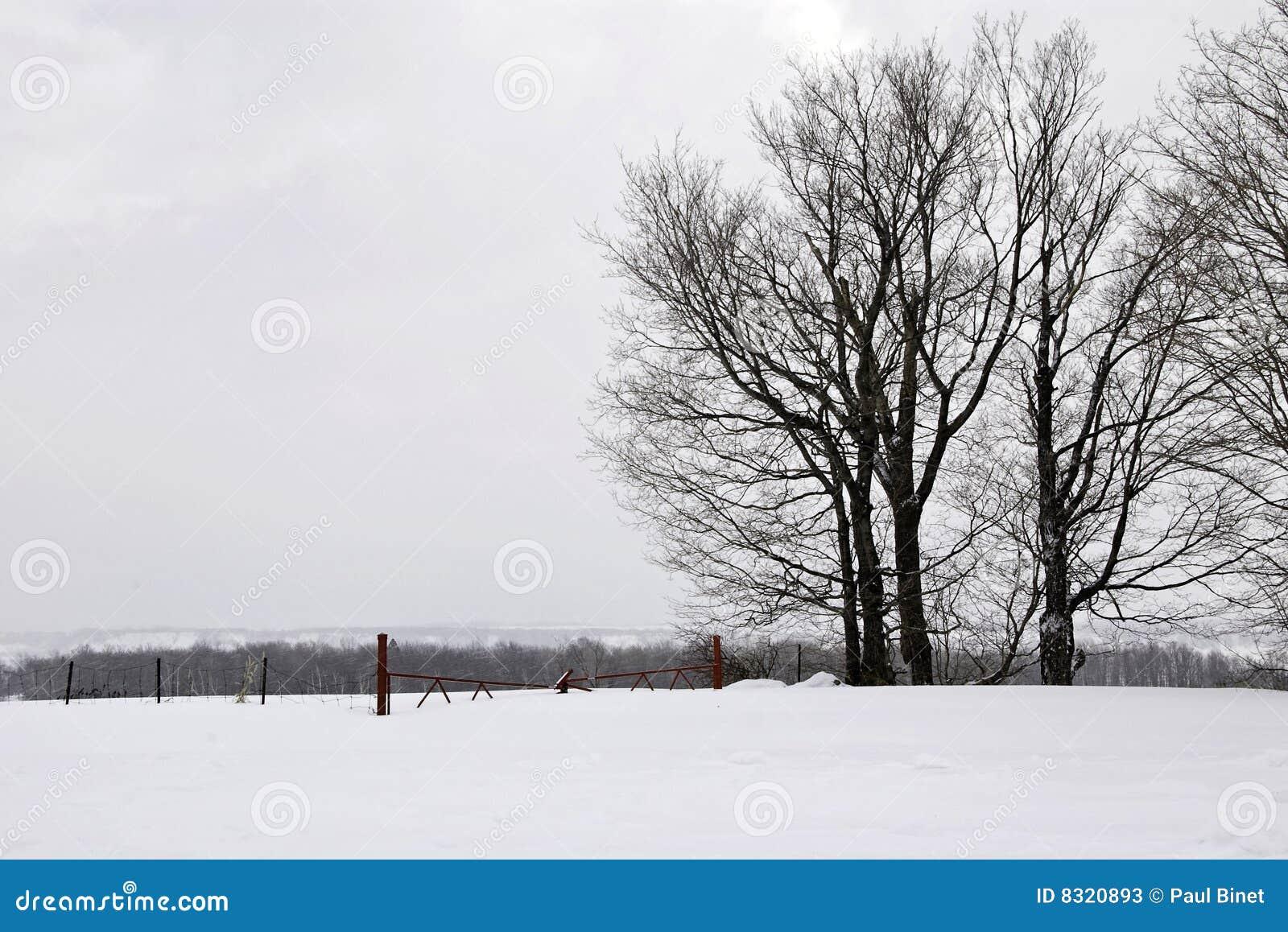 λυπημένος χειμώνας
