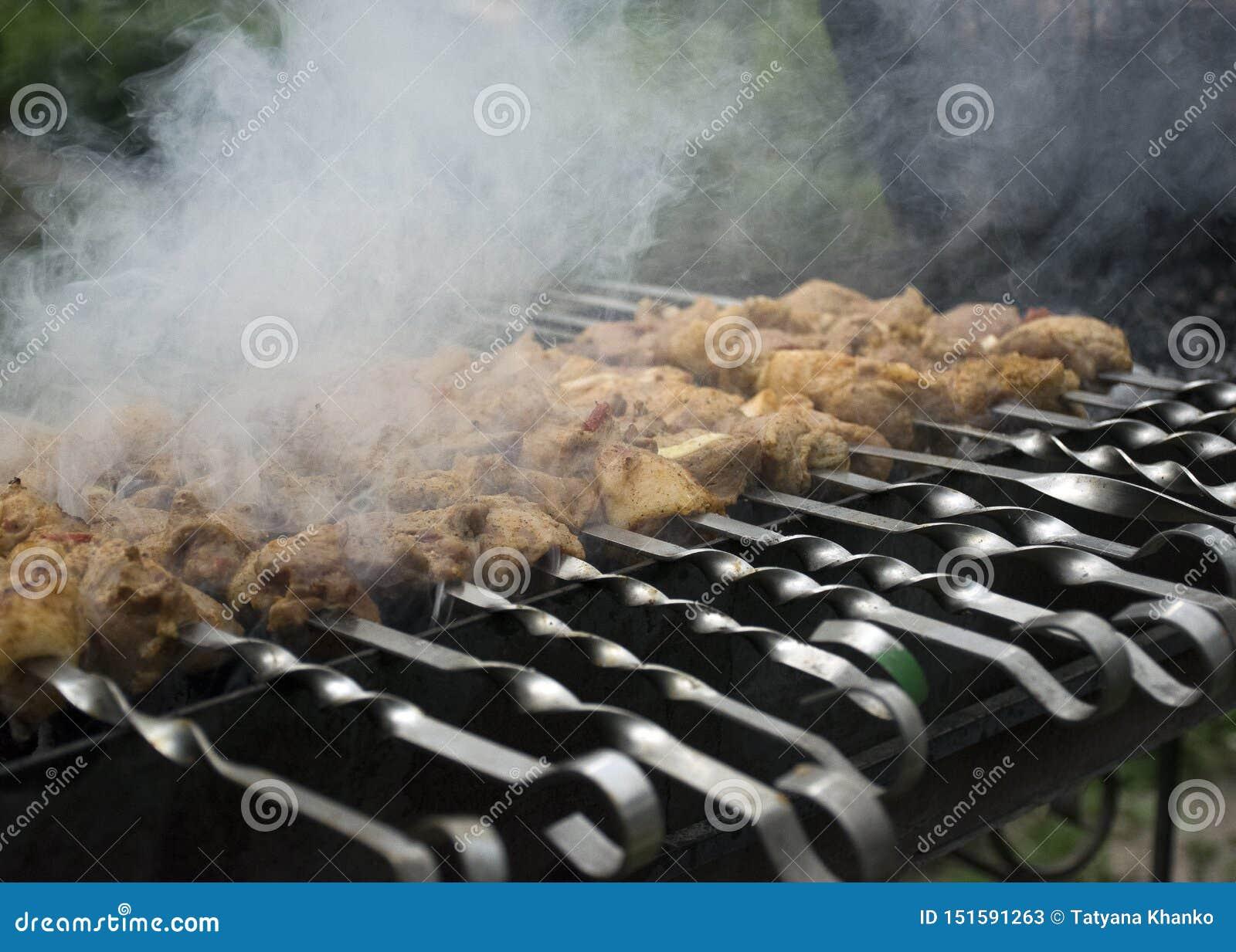 Μάγειρες κρέατος στους καυτούς άνθρακες στον καπνό Πικ-νίκ στη φύση