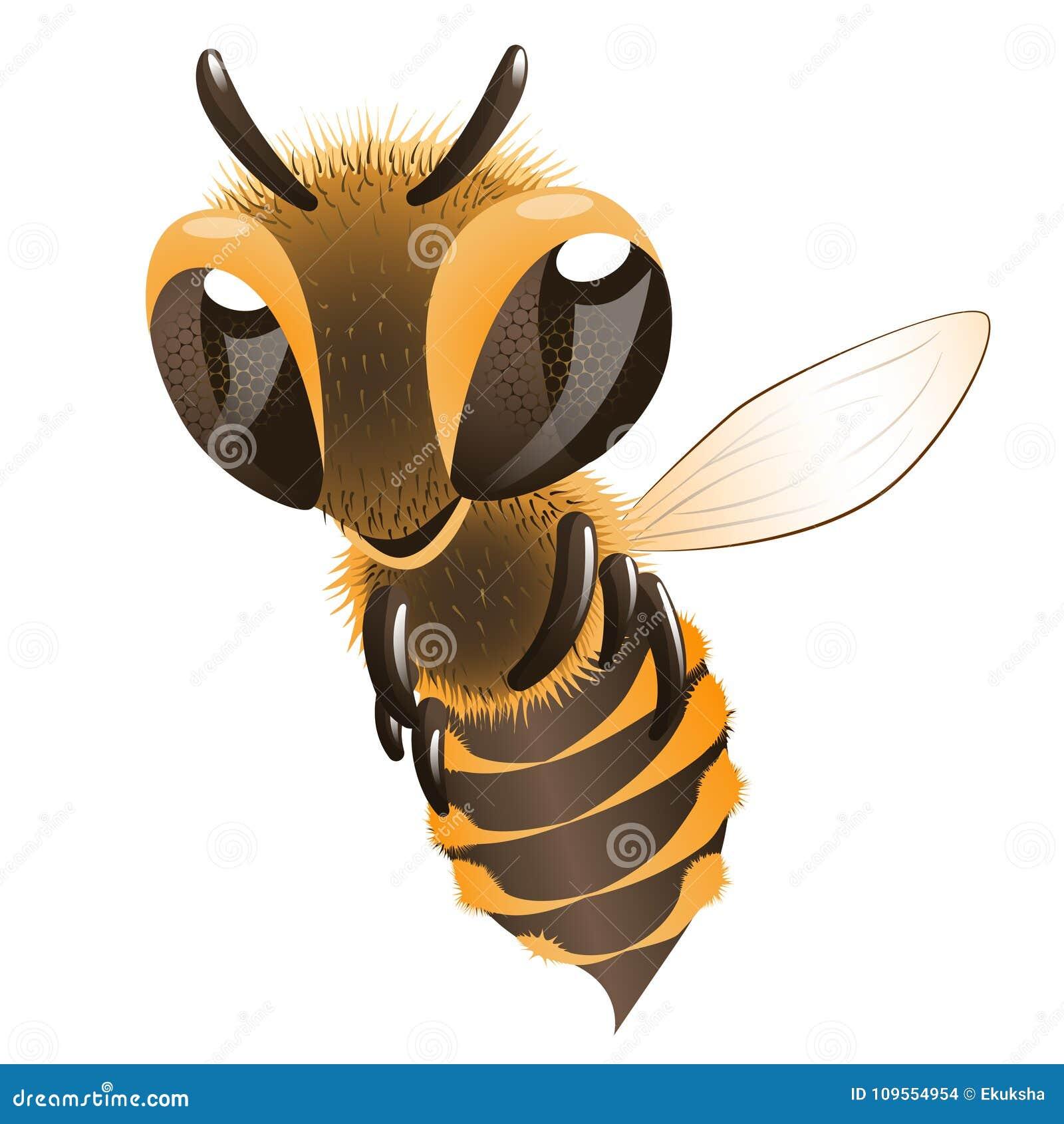 μέλισσα ευτυχής