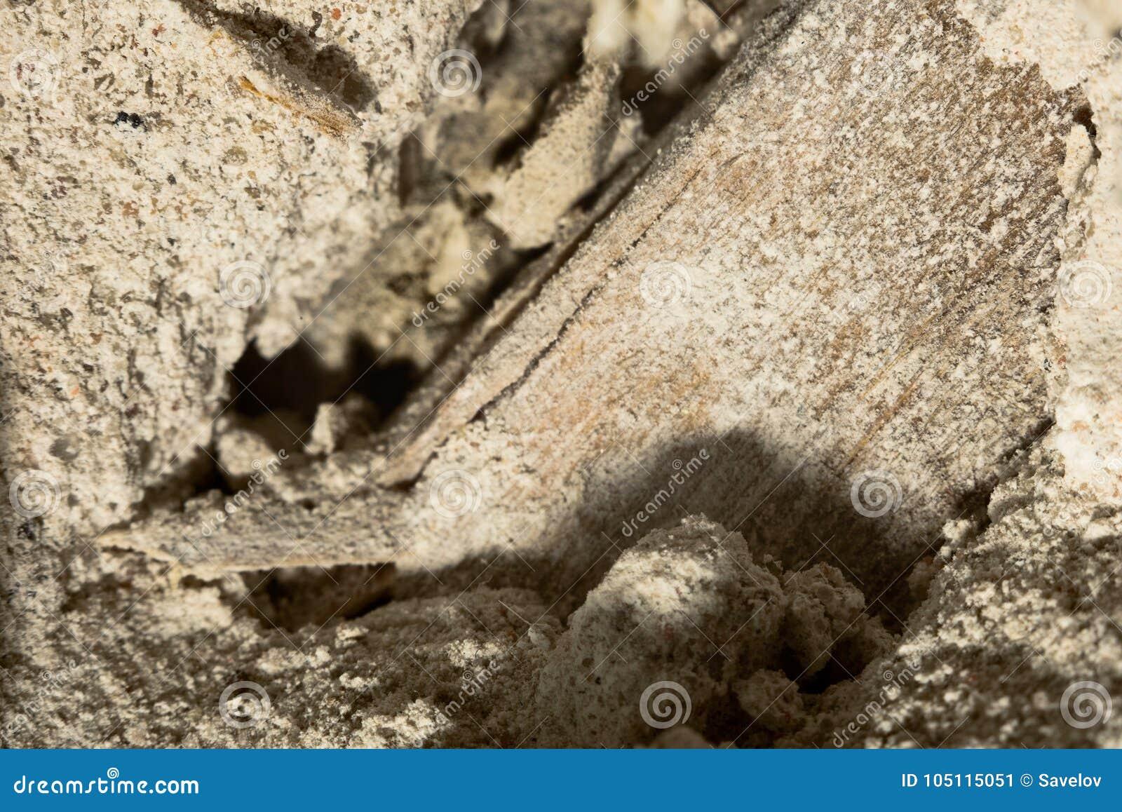 Μέσα στο, θρυμματιμένος τοίχο με μια ξύλινη επικαλύπτοντας μακροεντολή