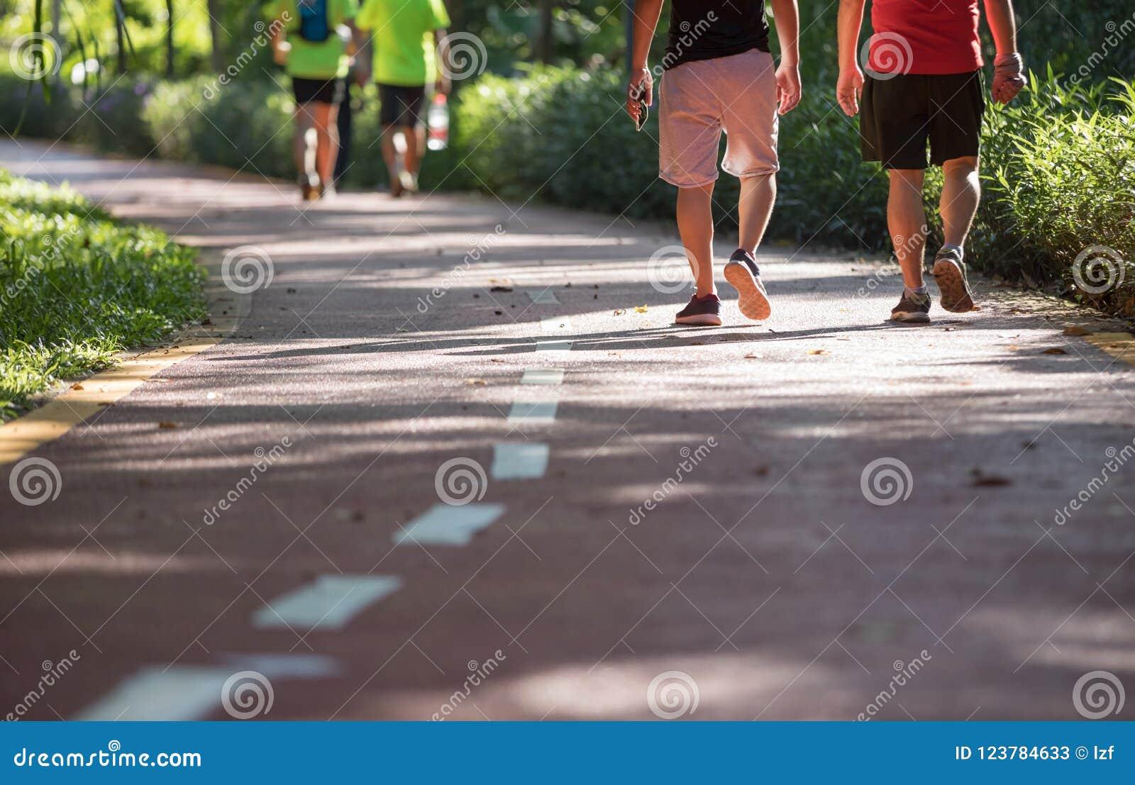 Μέσοι ηλικίας άνθρωποι που περπατούν στο ηλιόλουστο ίχνος πάρκων