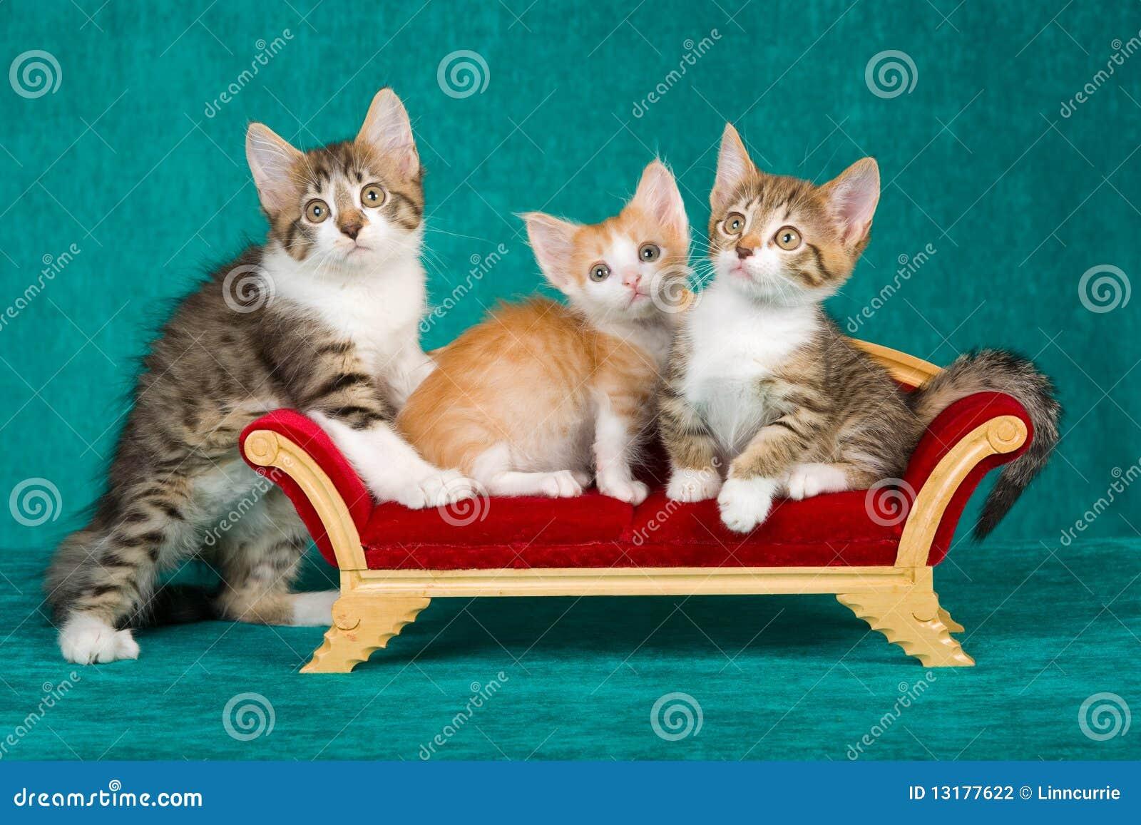 μίνι καναπές 3 χαριτωμένος γ&alp
