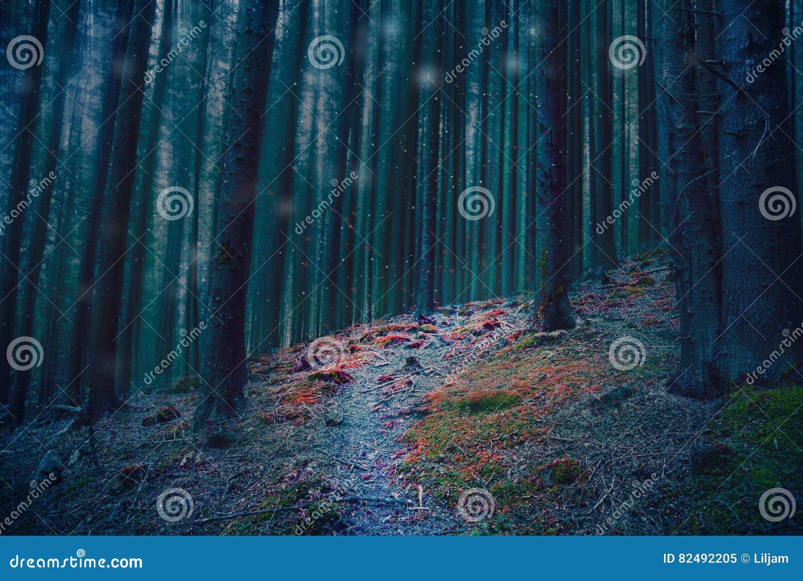 Μαγική δασική πορεία στα ξύλα με τα μπλε δέντρα και το κόκκινο βρύο