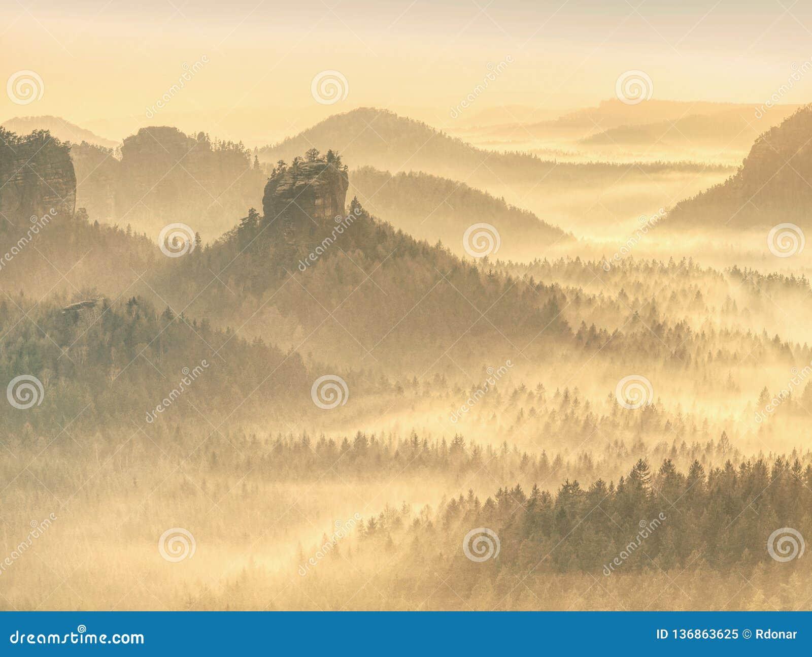 Μαγικό δάσος φθινοπώρου με τις ακτίνες ήλιων το πρωί