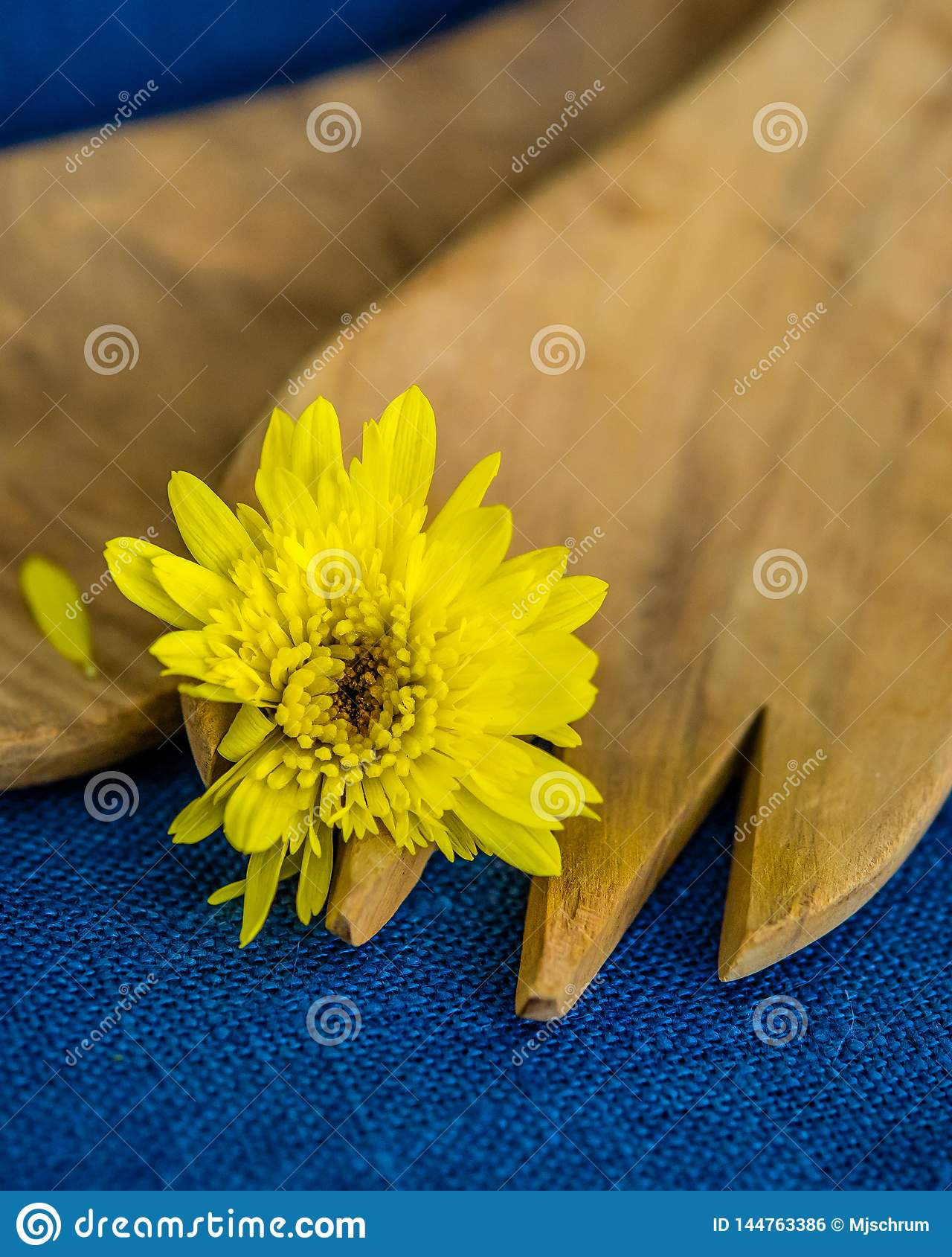 Μακροεντολή του κίτρινου λουλουδιού στο ξύλινο δίκρανο