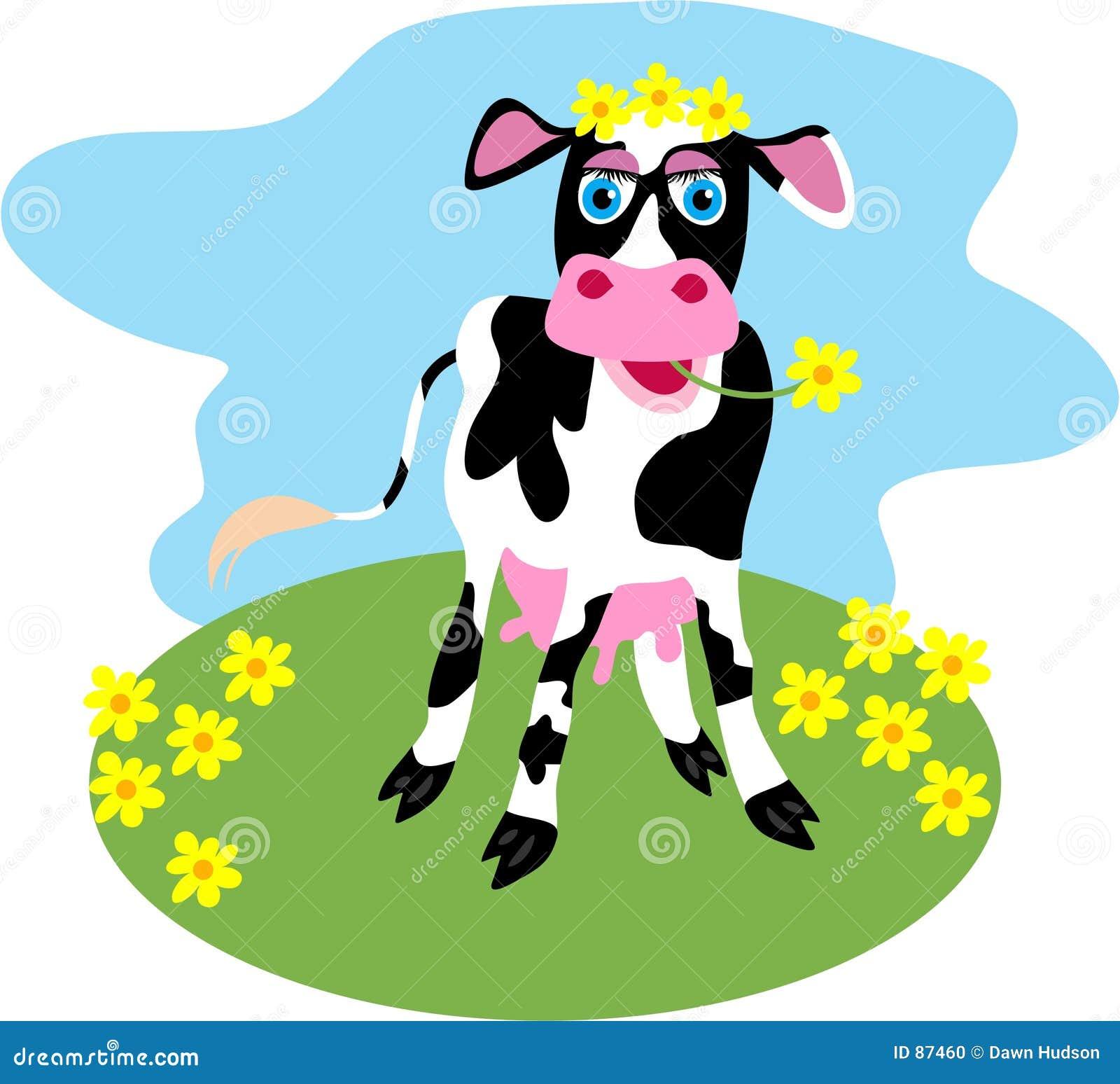 μαργαρίτα αγελάδων